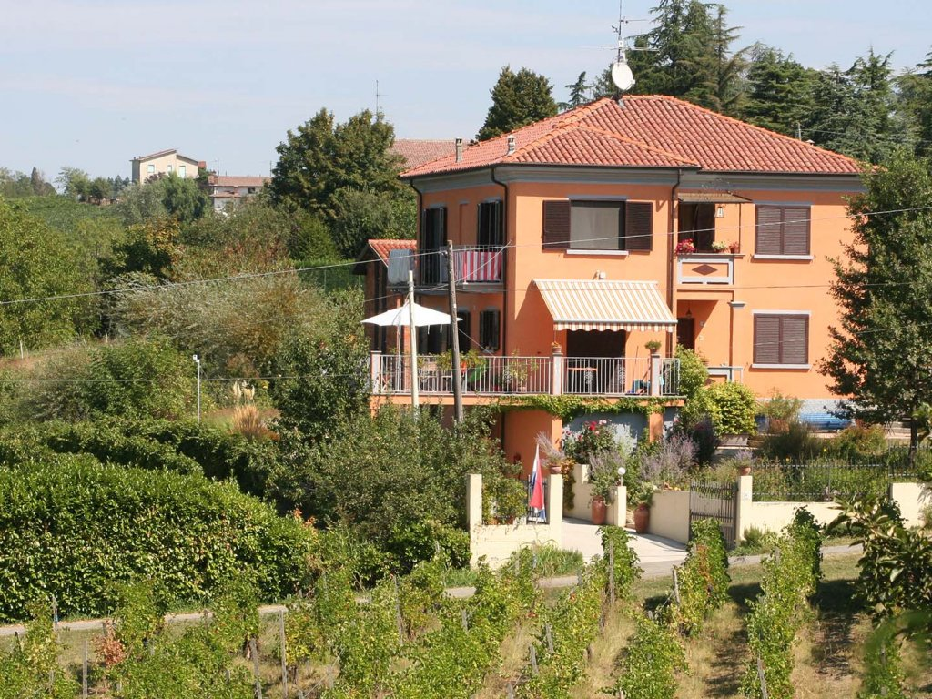 Villa in the vineyards