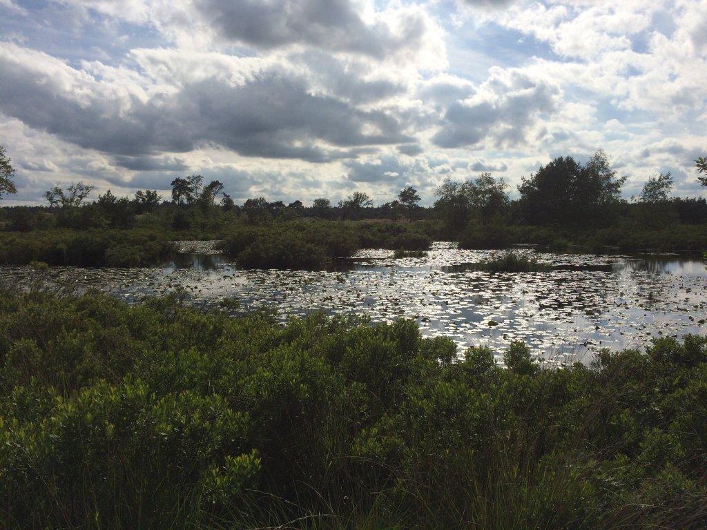 Malpi, een mooi natuurgebied vlakbij Borkel en Schaft